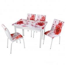 Комплект обеденной мебели Красная Роза (раскладной стол 110*70 см и 4 стула)