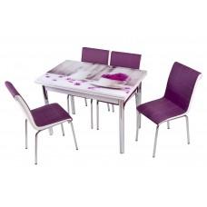 Комплект обеденной мебели Ваза (раскладной стол 110*70 см и 4 стула)